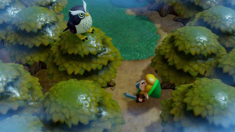 The Legend of Zelda : Link's Awakening 04